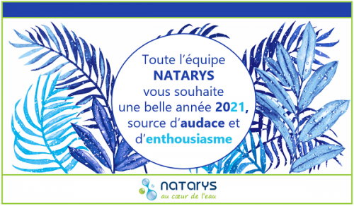 Voeux Natarys 2021