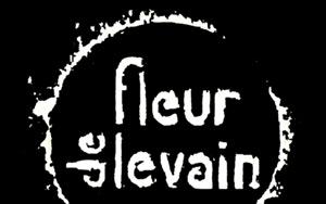 Logo Fleur De Levain